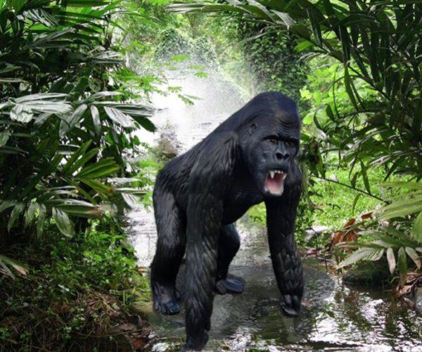 gorilla patsasmaailma (2)